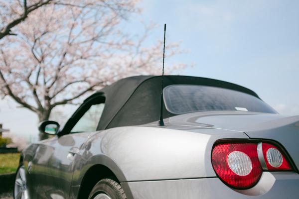 桜・BMW Z4