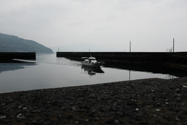 アロハオレンジ・周防大島
