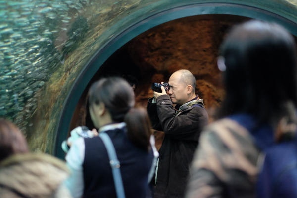 ひとモノコトつながるデザインプロジェクト・市立しものせき水族館「海響館」・ヨロズカフェ・ものばんく