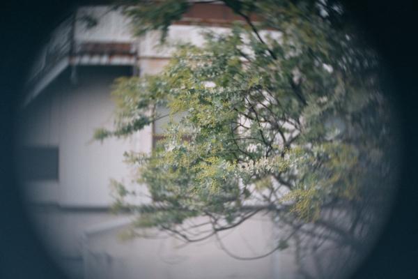 FUJIAN 25mm F/1.4 CCTV Cマウントレンズ(シルバー)
