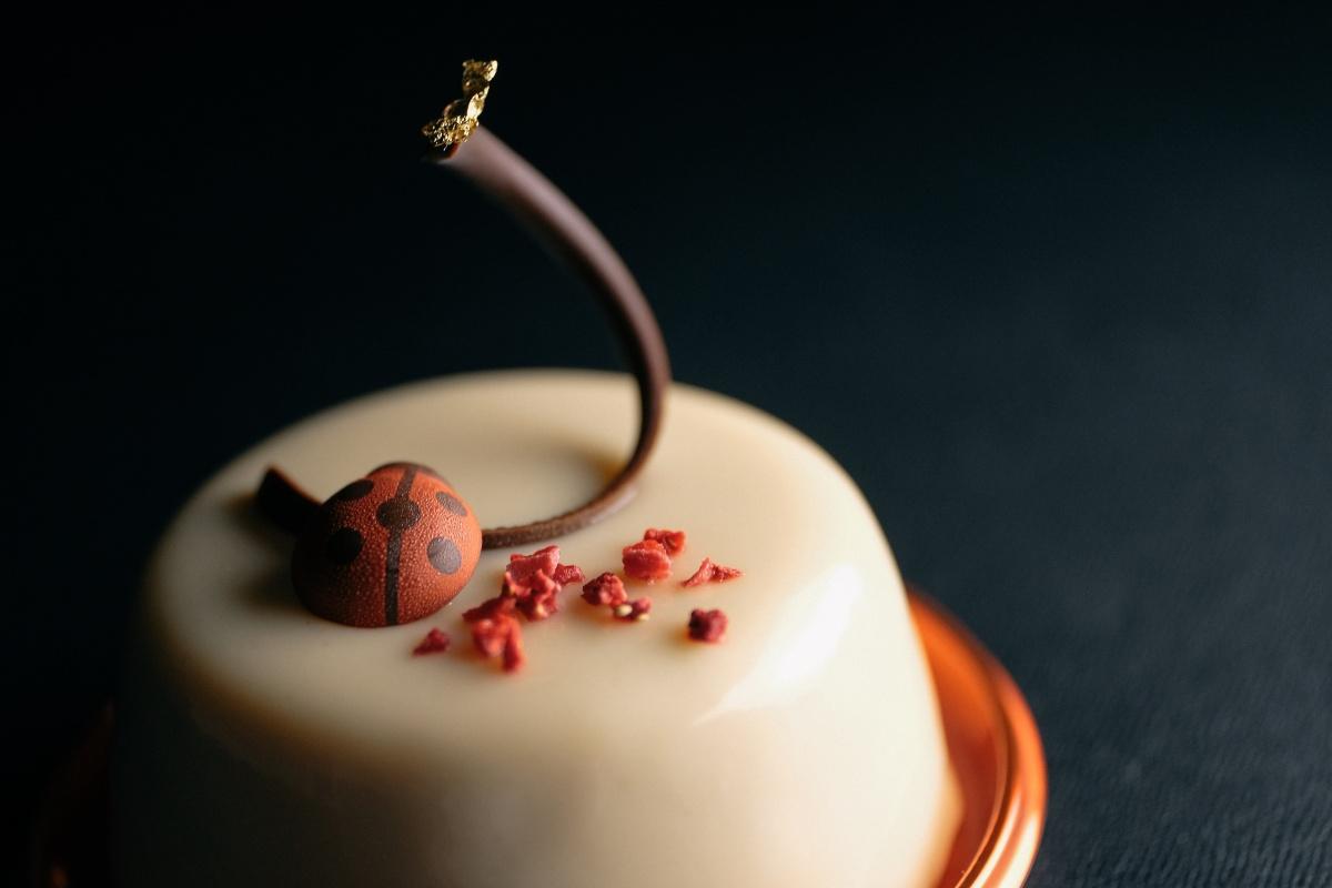 秋らしい美しいケーキが新登場!下関の菓子工房na.nan