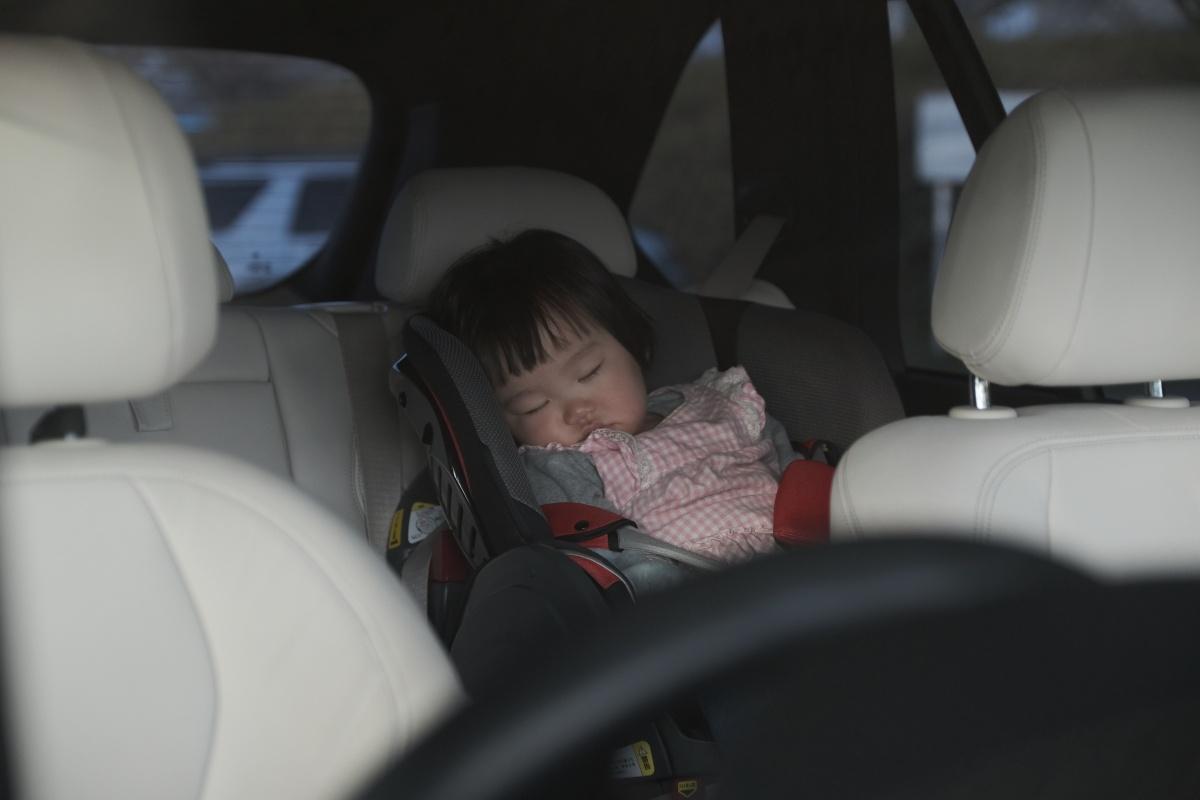 恒例のFUJIFILM X-H1 ファースト・ショットは姫ちゃん!河川敷では爆睡!
