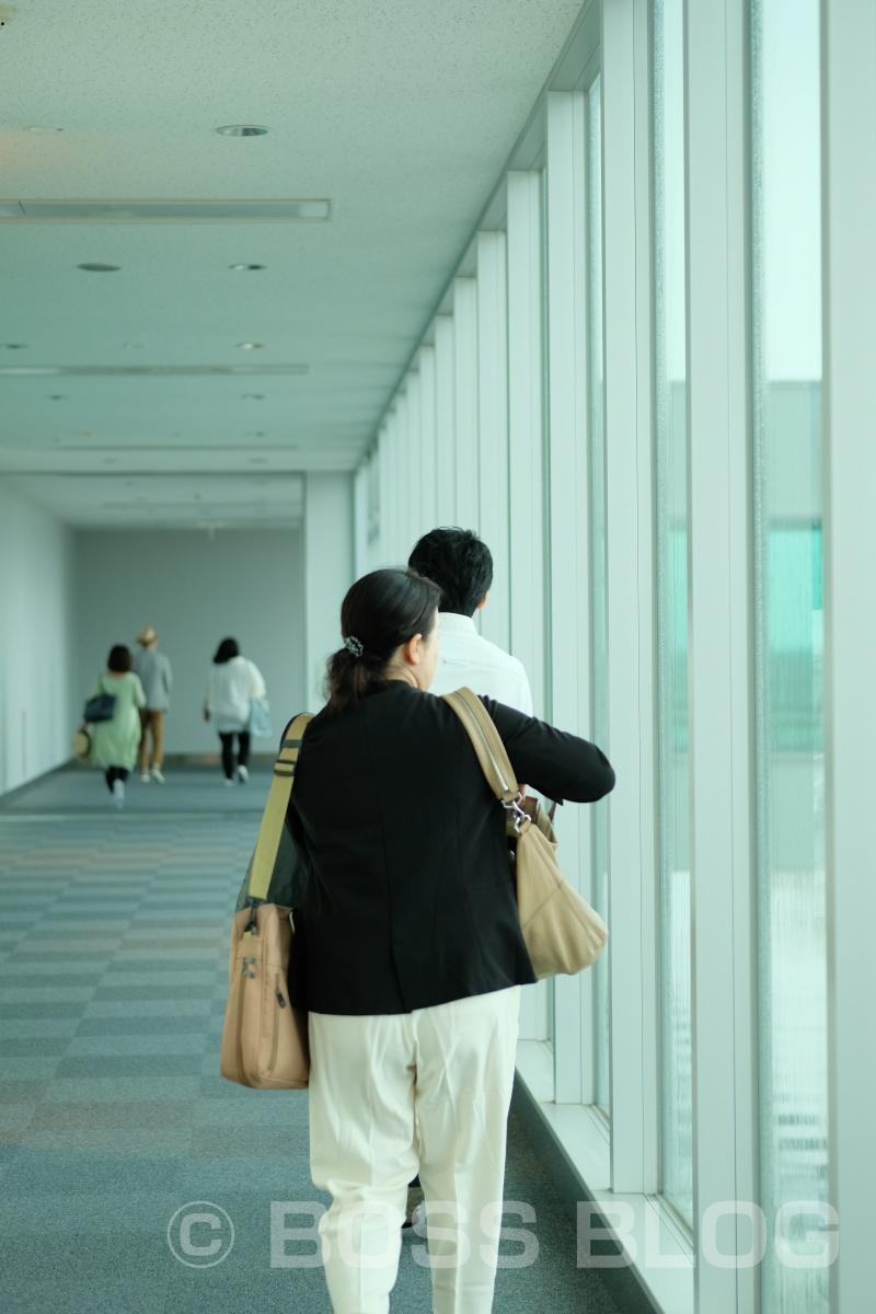 沖縄から企業ブランディングデザインのオファー頂きました!いざ沖縄へ!
