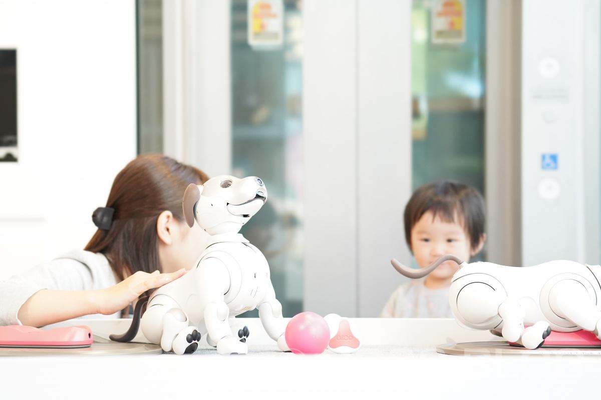 念願の姫ちゃんと二人でモーニングデート(笑)