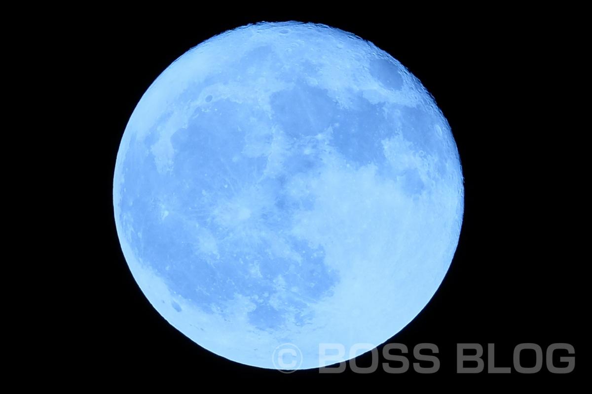 今夜は満月、その前にグリーンカレー