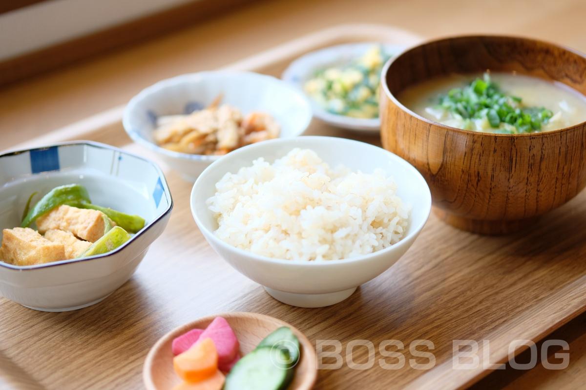 現場実測の後は、日替わりの総菜と旨いごはん。そして、具いっぱいのお味噌汁(ちー食堂)