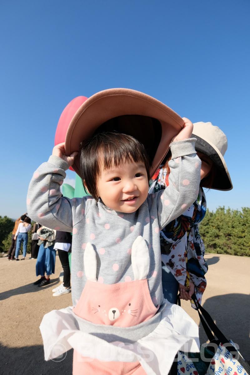 山口ゆめ花博の最終日なので手づくり弁当!おむすびはパパと姫ちゃん作(笑)を持って!
