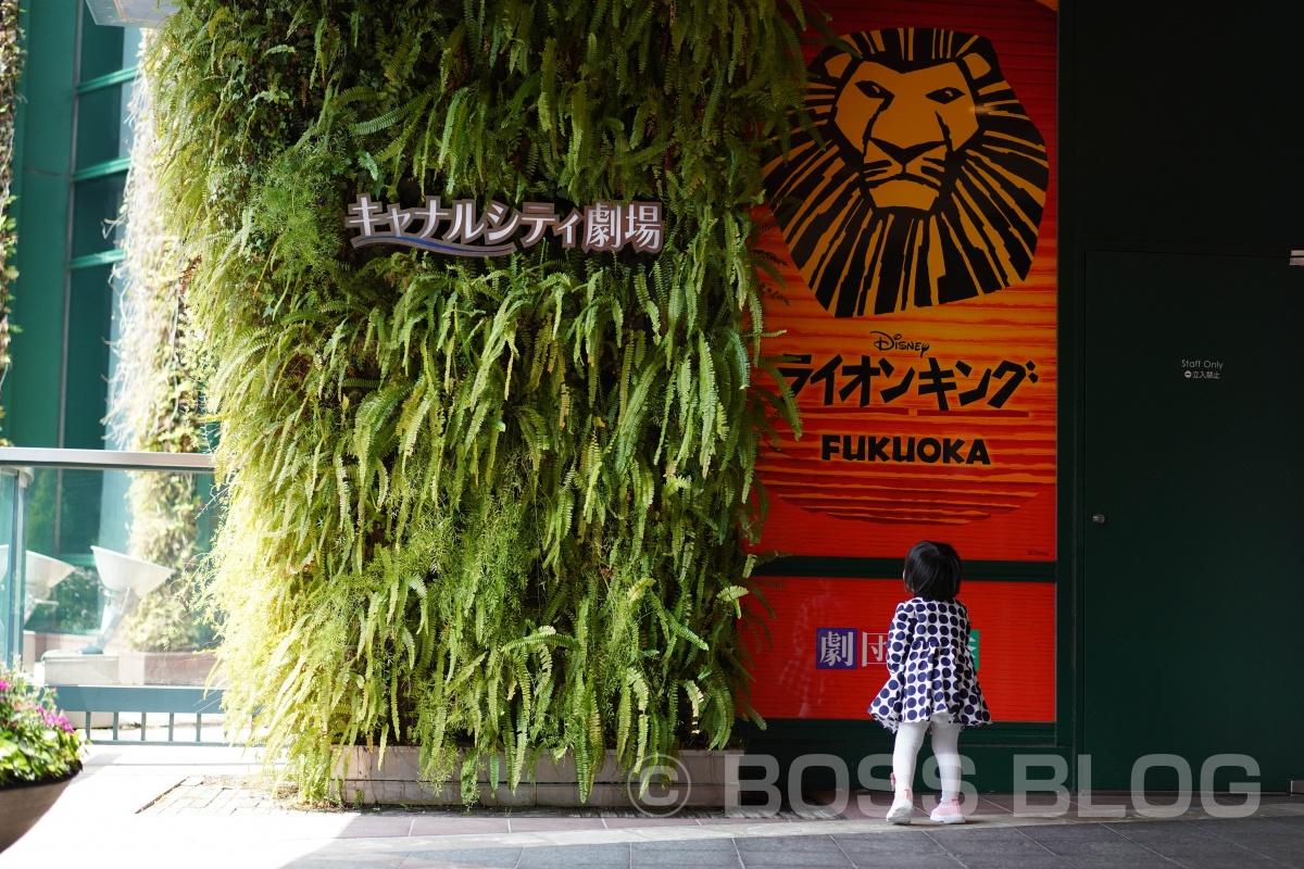 劇団四季ライオンキング・キャナルシティ劇場