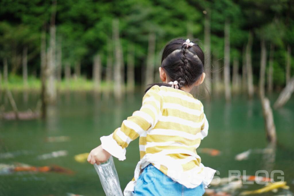 一の俣桜公園